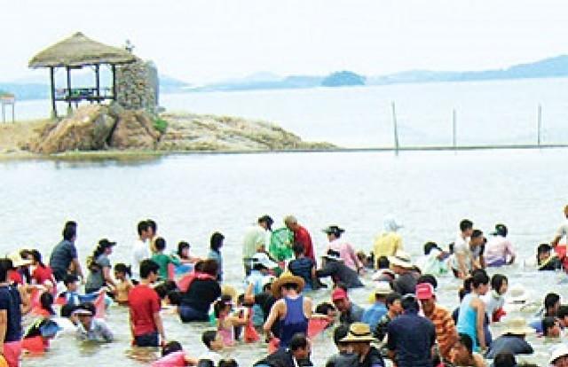 전남 함평